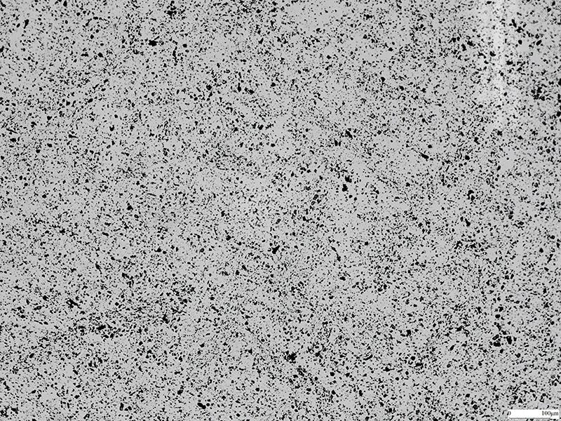 金相顯微鏡-100倍-晶相